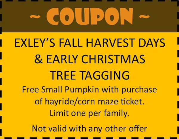 Free Small Pumpkin with Purchase