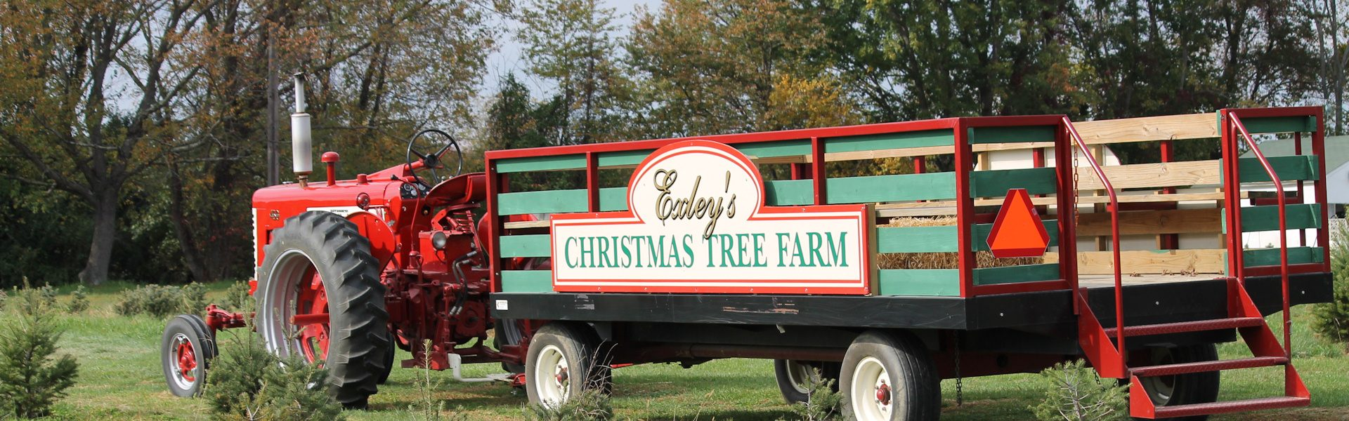 Exley\'s Christmas Tree Farms