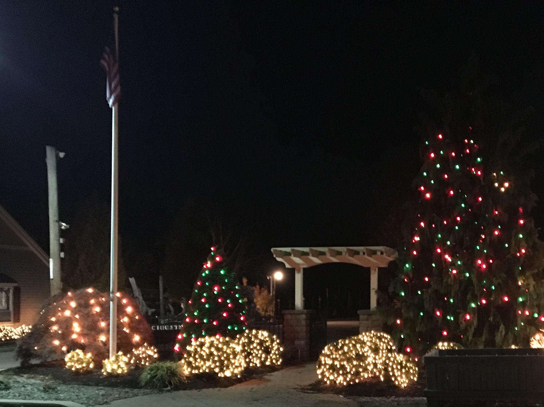 Christmas Tree Farm - Exley\'s Christmas Tree Farms